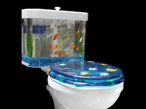 Fish-tank toilet , toilet unclogged