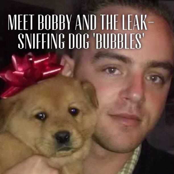 plumbers , leak sniffing dog , meet the plumbers